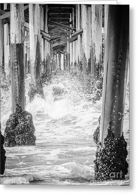 Under The California Pier Black And White Picture Greeting Card by Paul Velgos