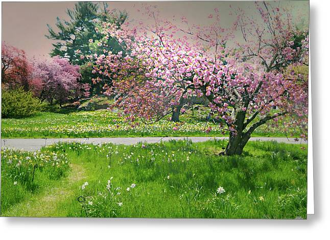 Greeting Card featuring the photograph Under The Cherry Tree by Diana Angstadt