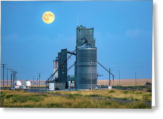 Under The Harvest Moon Greeting Card by Todd Klassy