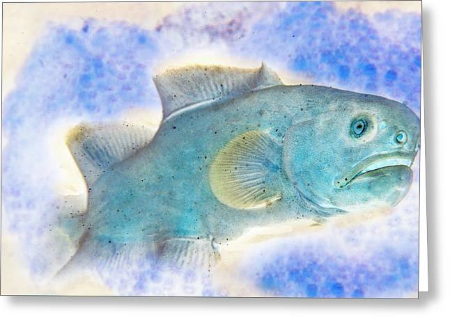 Under The Sea Colorful Watercolor Art #2 Greeting Card