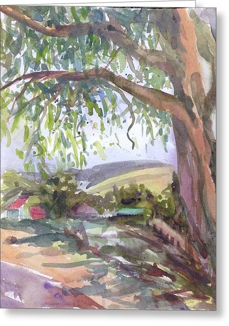 Under The Shade  Greeting Card by Diane Renchler