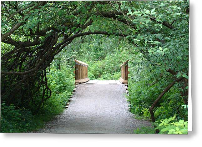 Under The Tunnel Greeting Card by Rod Jellison