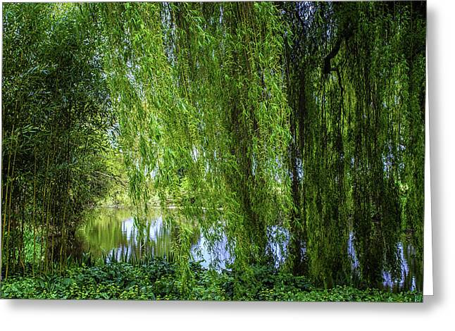 Under The Willow Tree Greeting Card by Martin Newman