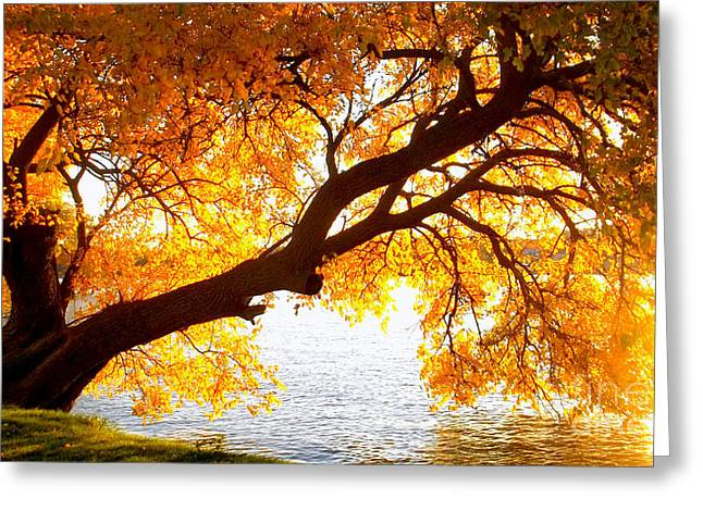Under The Yellow Tree Greeting Card