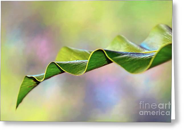 Greeting Card featuring the photograph Undulating Nature By Kaye Menner by Kaye Menner
