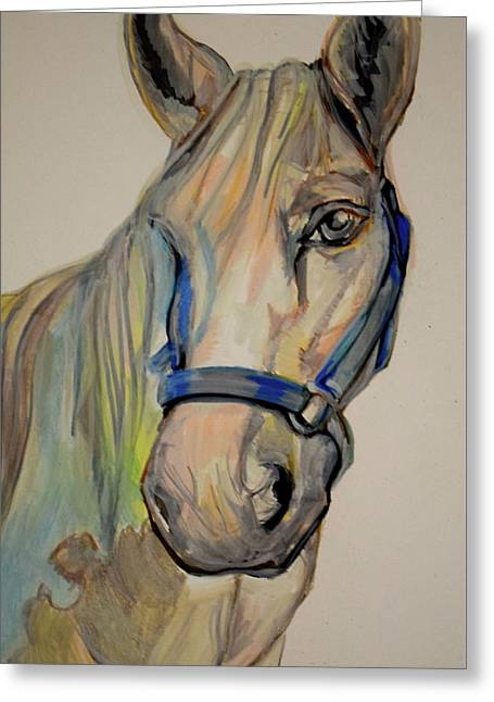 Unfinished Horse Greeting Card