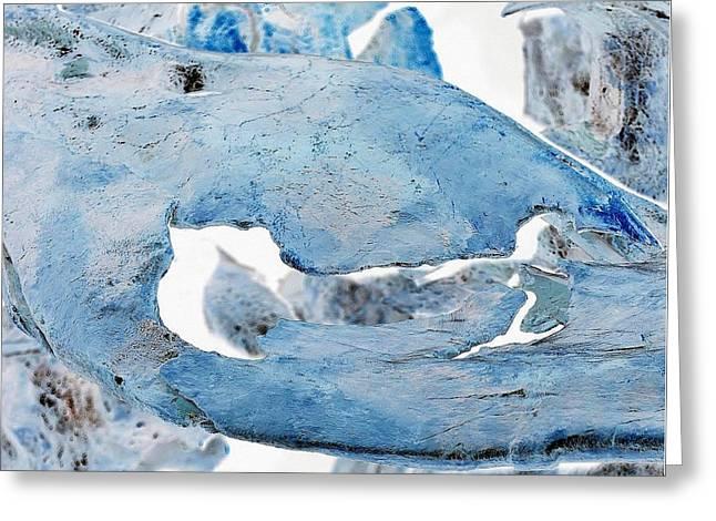 Unidentified Aquatic Object Greeting Card