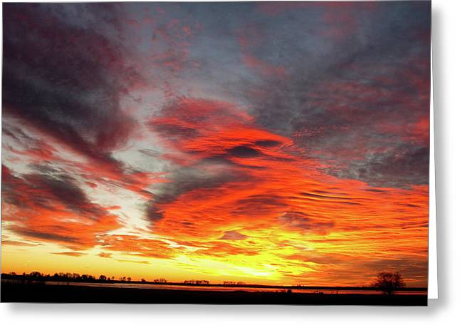 Sunset Canvas Art Greeting Cards - Union Lake Sunrise Feb 14th 2011 - Longmont - Boulder County - C Greeting Card by James BO  Insogna