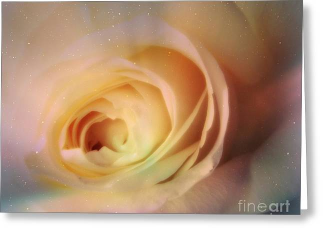 Greeting Card featuring the photograph Universal Rose by Kristine Nora