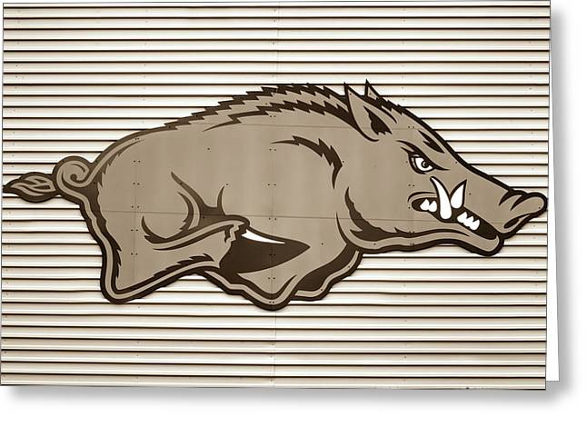 University Of Arkansas Razorback On Metal - Sepia Edition Greeting Card by Gregory Ballos