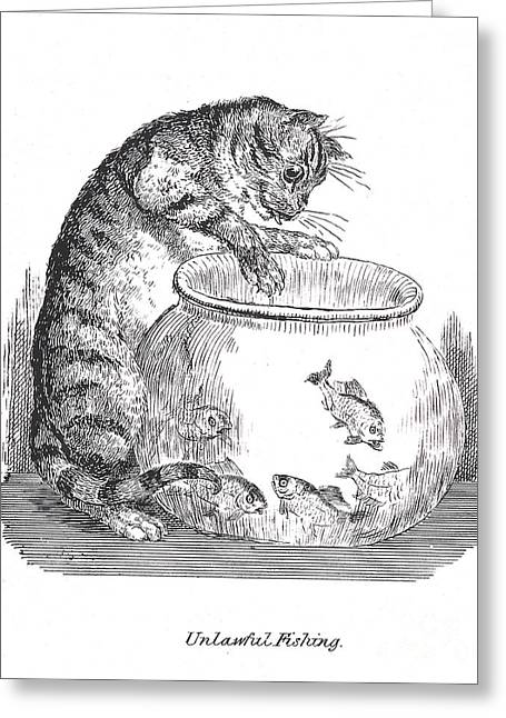 Unlawful Fishing Cat Paws At Goldfish Greeting Card by Wellcome Images