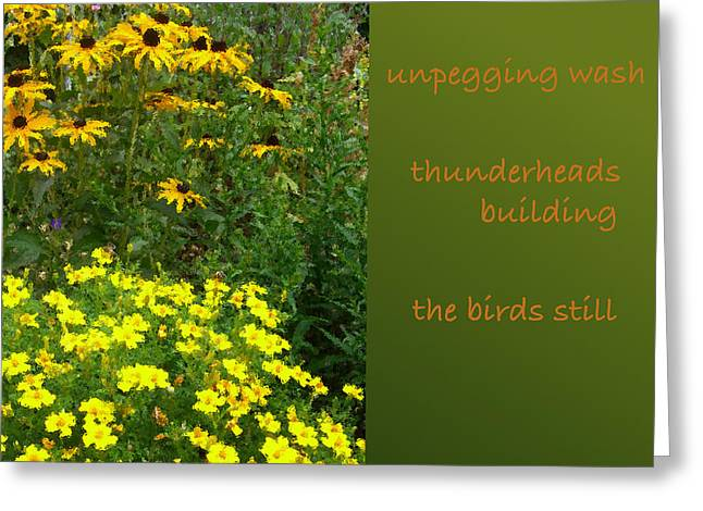 Unpegging Wash Haiga Greeting Card