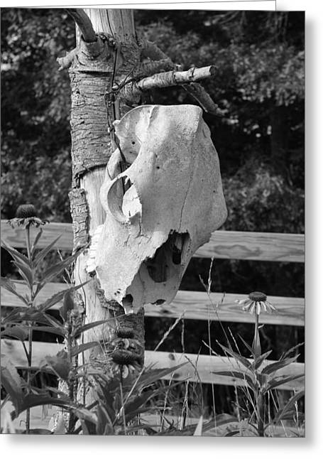 Greeting Card featuring the photograph Untitled In Black And White by Laurinda Bowling