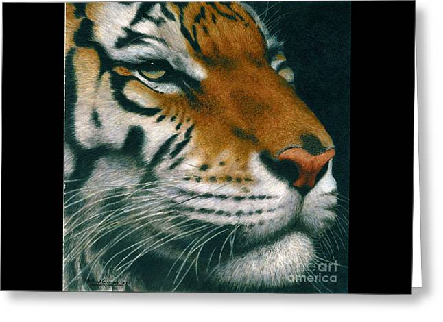 Untitled Tiger Greeting Card by Brad Carraway