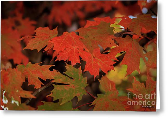 Untouchable Silver Maple Fall Leaf Art Greeting Card by Reid Callaway