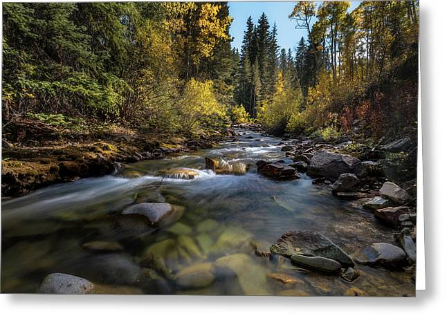 Up A Colorado Creek Greeting Card