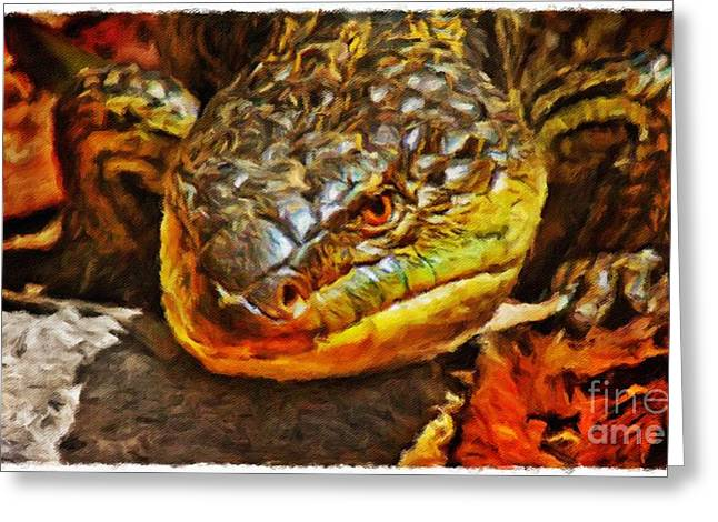 Up Close And Personal Greeting Card by Blair Stuart