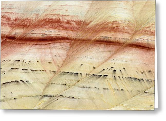 Up Close Painted Hills Greeting Card by Greg Nyquist
