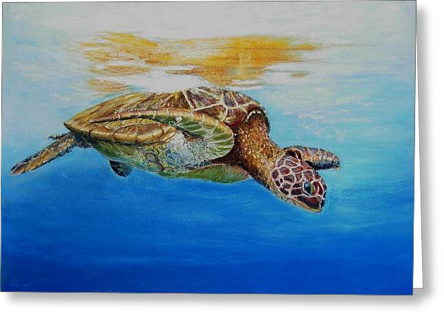 Up For Some Rays Greeting Card by Ceci Watson