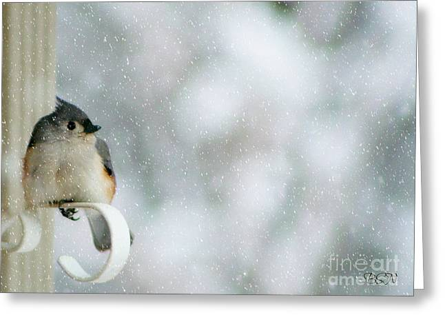 Up Front Greeting Card by Barbara S Nickerson