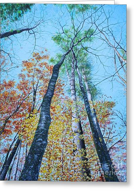 Up Into The Trees Greeting Card by Mike Ivey