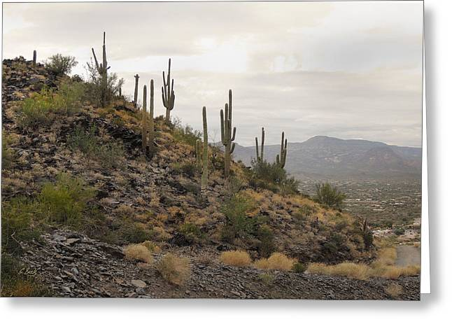 Up On Black Mountain Greeting Card by Gordon Beck