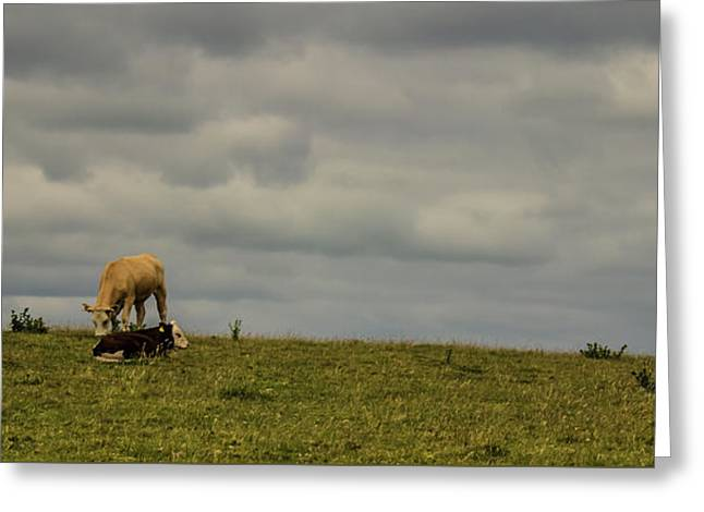 Up On The Hill Greeting Card
