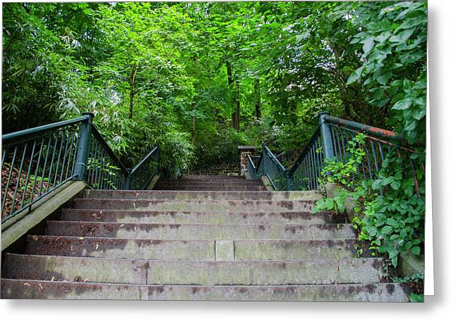 Up The Hundred Steps - Wissahickon Greeting Card