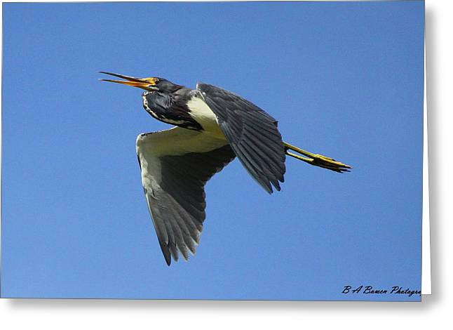 Circle B Bar Greeting Cards - Up Up and Away Greeting Card by Barbara Bowen