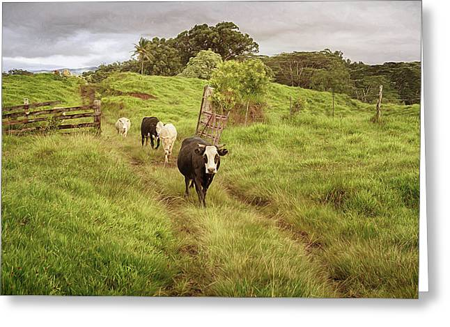 Greeting Card featuring the photograph Upcountry Ranch by Susan Rissi Tregoning