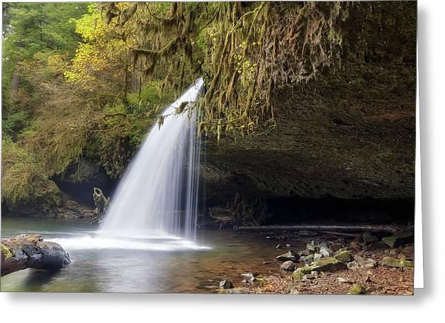 Upper Butte Creek Falls Closeup Greeting Card by David Gn