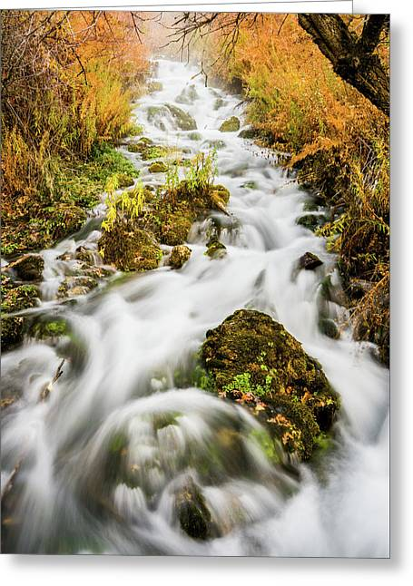 Upper Cascades At Cascade Springs Greeting Card