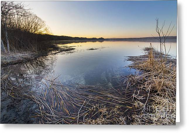 Upper Herring Lake Spring Morning Greeting Card by Twenty Two North Photography