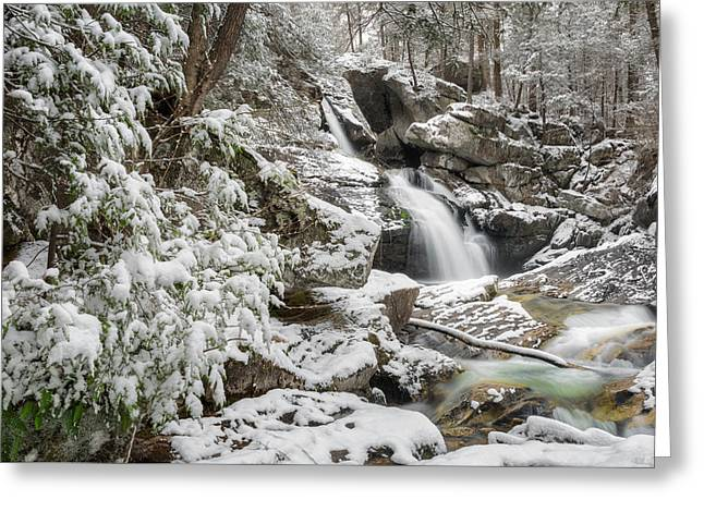 Upper Kent Falls 2016 Greeting Card by Bill Wakeley