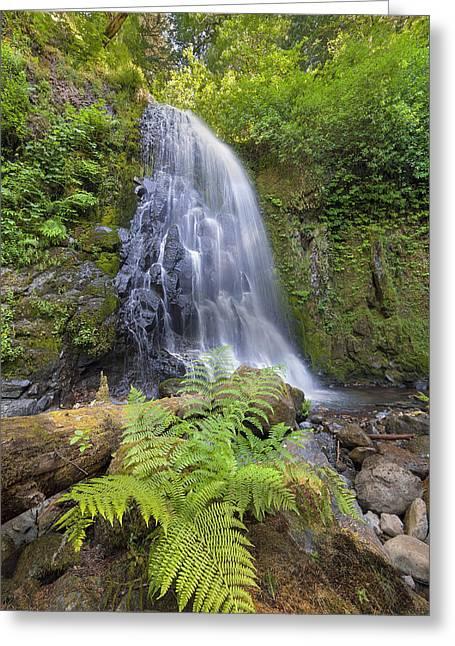 Upper Mccord Creek Falls Greeting Card by David Gn