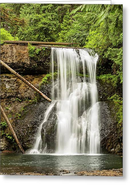 Upper North Silver Falls Vertical Greeting Card by Mary Jo Allen