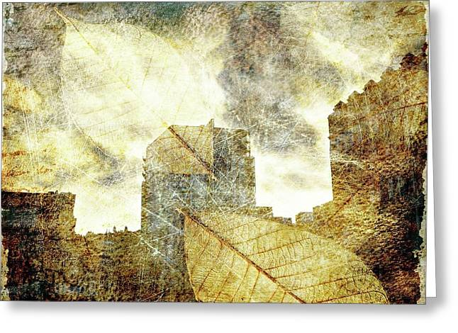 Urban Buildings Greeting Cards - Urban Nature Greeting Card by Cathie Tyler