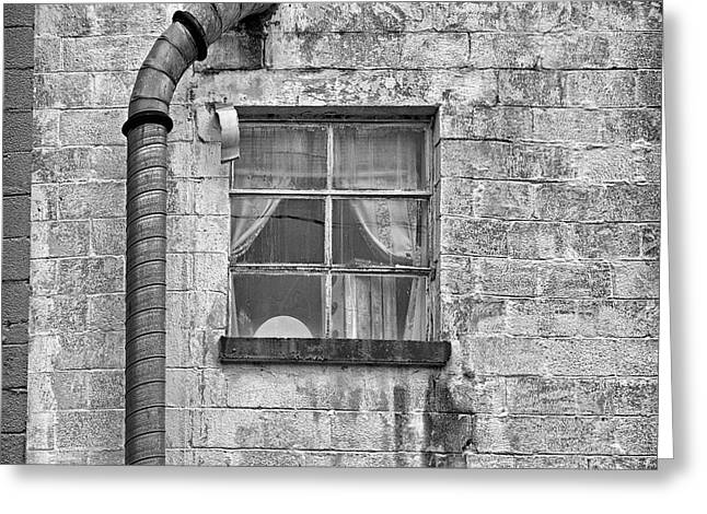 Urban Window Greeting Card by Steven Michael