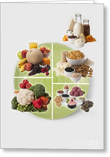 Usda Myplate Greeting Card by George Mattei