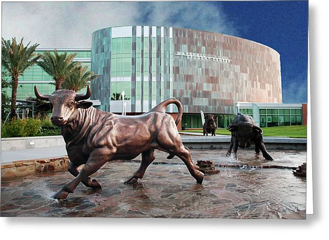 Usf Tampa Greeting Card by Francesco Roncone