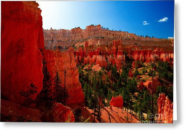 Utah - Navajo Loop Greeting Card by Terry Elniski
