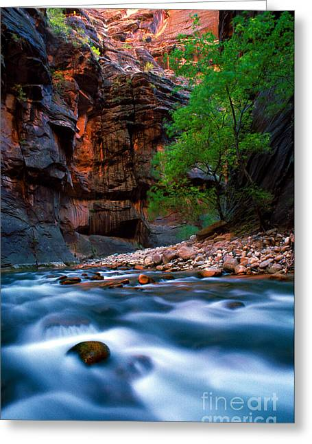 Utah - Virgin River 4 Greeting Card