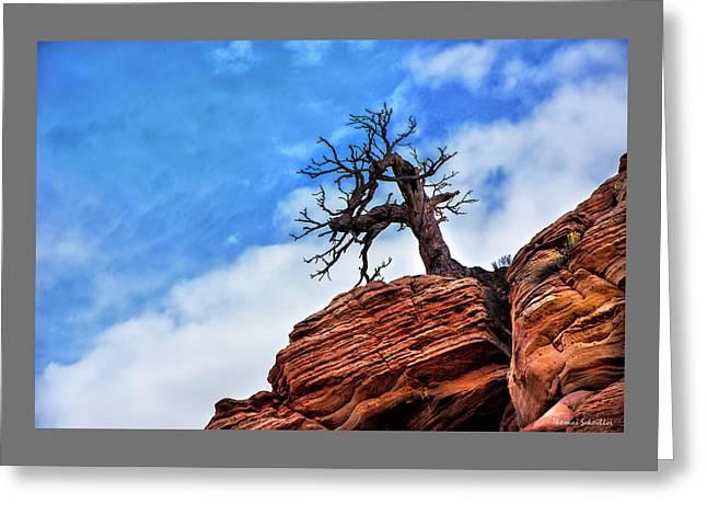 Utah Juniper On The Cliffs Greeting Card by Thomas Schoeller