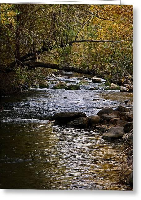 Utah's Ogden River In October Greeting Card by Jan  Tribe