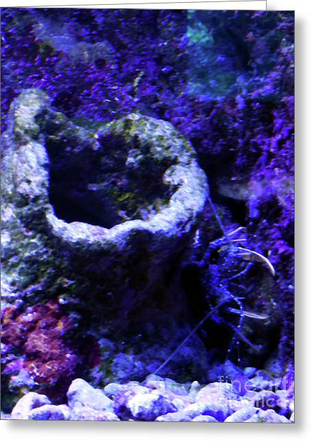 Greeting Card featuring the digital art Uw Coral Stone by Francesca Mackenney