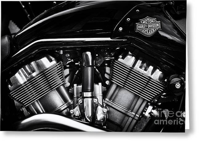 V Rod Muscle Greeting Card by Tim Gainey