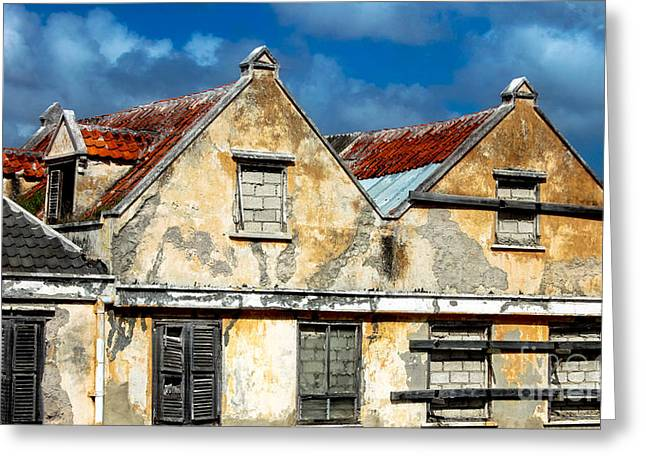 Vacancy By Curacao  Greeting Card by Steven Digman