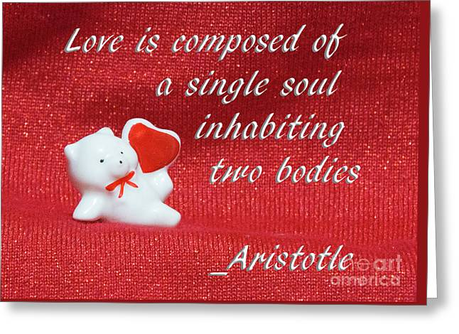 Greeting Card featuring the photograph Valentine By Aristotle by Linda Phelps