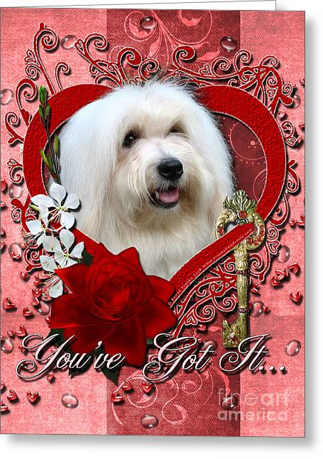 Valentines - Key To My Heart Coton De Tulear Greeting Card by Renae Laughner