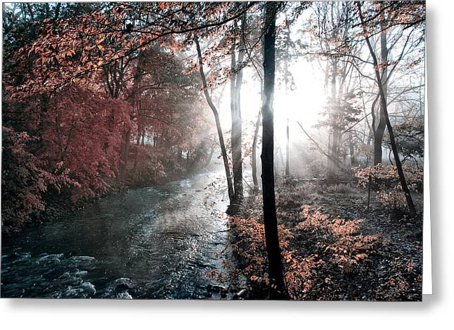 Valley Creek Sunrise Greeting Card